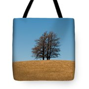 Tree Formation On A Hill Of Veldt Tote Bag