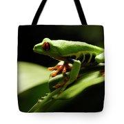 Tree Frog 13 Tote Bag
