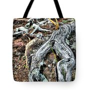 Tree Frog Tote Bag