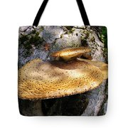 Tree Fungus 1 Tote Bag