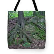 Tree Growing Over A Rock Tote Bag