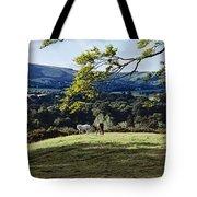 Tree In A Field, Great Sugar Loaf Tote Bag
