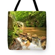 Tree In The Bend Tote Bag
