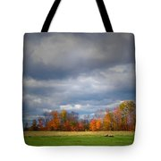 Tree Line On Sunset Hill In New Hampshire Tote Bag