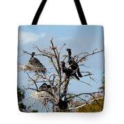Tree Of Florida Cormorants Tote Bag