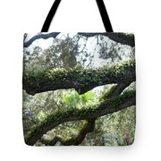 Tree Of Life Panorama Tote Bag
