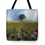 Tree On A Landscape, Giants Ring Tote Bag