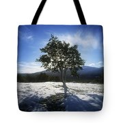Tree On A Snow Covered Landscape Tote Bag