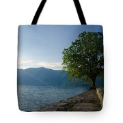 Tree On The Lake Front Tote Bag