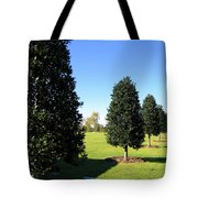 Tree Perspective Tote Bag