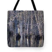 Tree Reflection Abstract Tote Bag