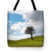 Tree Tote Bag by Semmick Photo