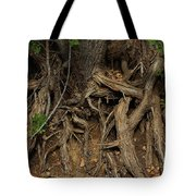 Tree Root's In The Creek Bed Tote Bag