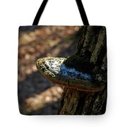 Tree Shelf Snow Sprinkled Fungus Tote Bag