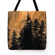 Tree Silhouettes In Front Of Cliff Face Tote Bag
