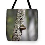 Tree Step Tote Bag