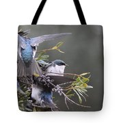 Tree Swallow - Standing Guard Tote Bag
