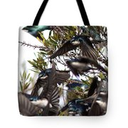 Tree Swallow - All Swallowed Up Tote Bag