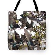 Tree Swallow Frenzy Tote Bag