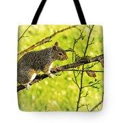 Tree Visitor Tote Bag
