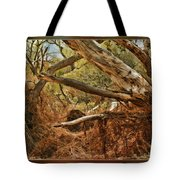 Tree Woods Tote Bag