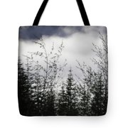 Trees And Clouds Tote Bag