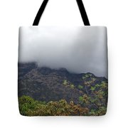 Trees And Leaves At The Base Of A Mountain With Clouds And Mist Covering The Top Tote Bag