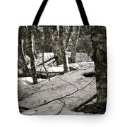 Trees And Snow In April Tote Bag