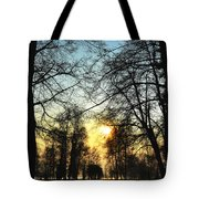 Trees And Sun In A Foggy Day Tote Bag