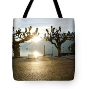 Trees And Sunset Tote Bag