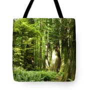 Trees At Cathedral Grove Tote Bag