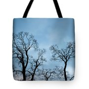 Trees. Autumn. Tote Bag by Konstantin Dikovsky