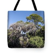 Trees Decorated With Moss Tote Bag
