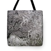 Trees Heavy With Cherry Blossoms Tote Bag