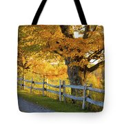 Trees In Autumn Colours And A Fence Tote Bag