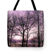 Trees In Glorious Calm Tote Bag