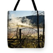 Trees In Nature Tote Bag