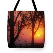 Trees In The Sunrise Tote Bag