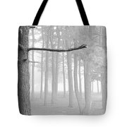 Trees On A Foggy  Morning Tote Bag