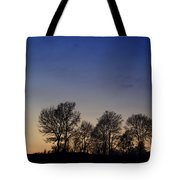 Trees On A Hill In Sunset Tote Bag