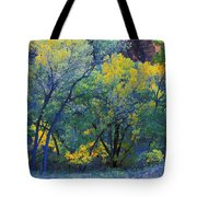 Trees On Edge Of Field In Autumn Tote Bag