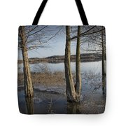 Trees On Flooded Riverbank No.1001 Tote Bag