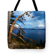 Trees On The Crater Tote Bag