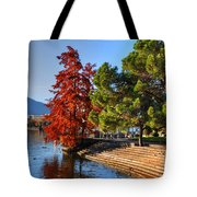 Trees On The Lake Front In Autumn Tote Bag