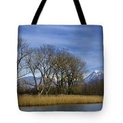 Trees On The Lakefront Tote Bag