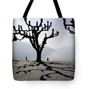 Trees With Shadows Tote Bag