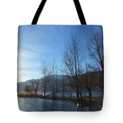 Trees With Sunlight Tote Bag