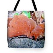 Tremella Mesenterica - Orange Brown Brain Fungus Tote Bag
