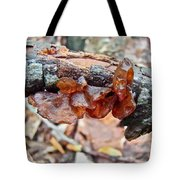 Tremella Mesenterica - Reddish Brown Brain Fungus Tote Bag