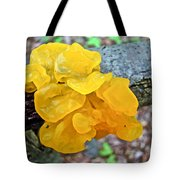 Tremella Mesenterica - Yellow Brain Fungus Tote Bag